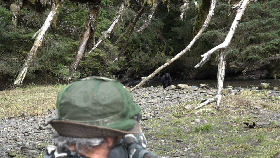 Really enjoyed some up close and personal bear encounters in Alaska while river wading back in September. Ready to head back up there to the last great wild frontier!