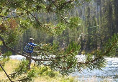 Jimmy Fly Fishing Yellowstone 2 1200